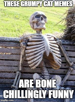 Im Sorry |  THESE GRUMPY CAT MEMES; ARE BONE CHILLINGLY FUNNY | image tagged in memes,waiting skeleton | made w/ Imgflip meme maker