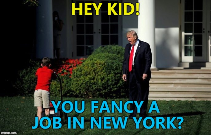 Donald Trump finds a replacement for Nikki Haley... :) | HEY KID! YOU FANCY A JOB IN NEW YORK? | image tagged in trump lawn mower,memes,nikki haley,donald trump,un ambassador,politics | made w/ Imgflip meme maker