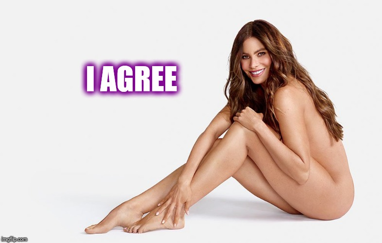 I AGREE | image tagged in sofia vergara nude | made w/ Imgflip meme maker