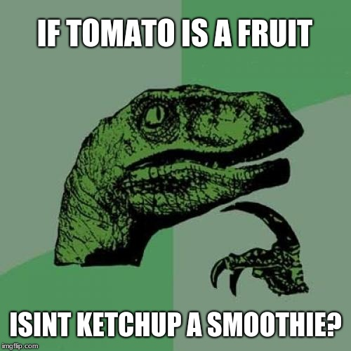 Philosoraptor Meme | IF TOMATO IS A FRUIT ISINT KETCHUP A SMOOTHIE? | image tagged in memes,philosoraptor | made w/ Imgflip meme maker