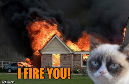 Burn Kitty Meme | I FIRE YOU! | image tagged in memes,burn kitty,grumpy cat | made w/ Imgflip meme maker