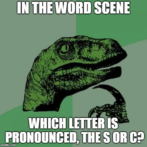 Philosoraptor Meme | IN THE WORD SCENE WHICH LETTER IS PRONOUNCED, THE S OR C? | image tagged in memes,philosoraptor | made w/ Imgflip meme maker