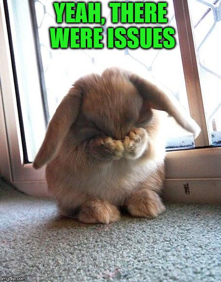 embarrassed bunny | YEAH, THERE WERE ISSUES | image tagged in embarrassed bunny | made w/ Imgflip meme maker
