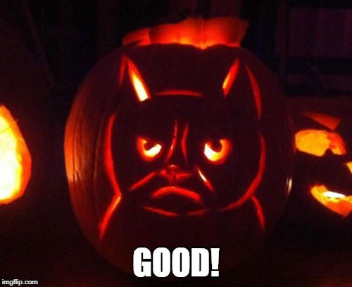 Grumpy cat week | GOOD! | image tagged in funny | made w/ Imgflip meme maker
