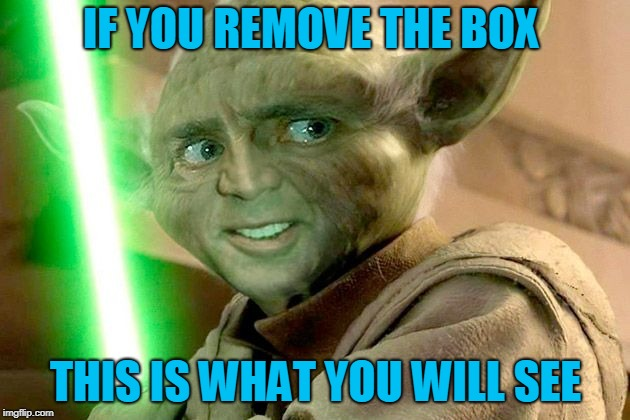 IF YOU REMOVE THE BOX THIS IS WHAT YOU WILL SEE | made w/ Imgflip meme maker