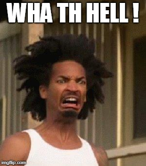 Disgusted Face | WHA TH HELL ! | image tagged in disgusted face | made w/ Imgflip meme maker