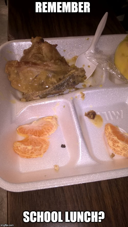 I didn't find this on the web, I took the picture! | REMEMBER SCHOOL LUNCH? | image tagged in disgusting,school lunch | made w/ Imgflip meme maker