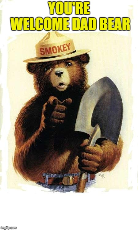 Smokey The Bear | YOU'RE WELCOME DAD BEAR | image tagged in smokey the bear | made w/ Imgflip meme maker