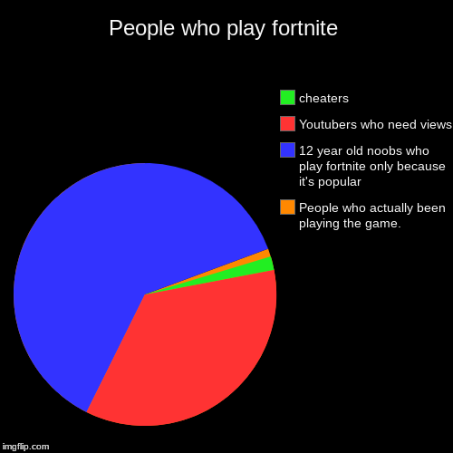 People who play fortnite | People who actually been playing the game., 12 year old noobs who play fortnite only because it's popular, Youtub | image tagged in funny,pie charts | made w/ Imgflip pie chart maker