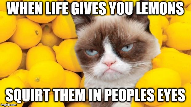 Grumpy Cat lemons | WHEN LIFE GIVES YOU LEMONS SQUIRT THEM IN PEOPLES EYES | image tagged in grumpy cat lemons | made w/ Imgflip meme maker