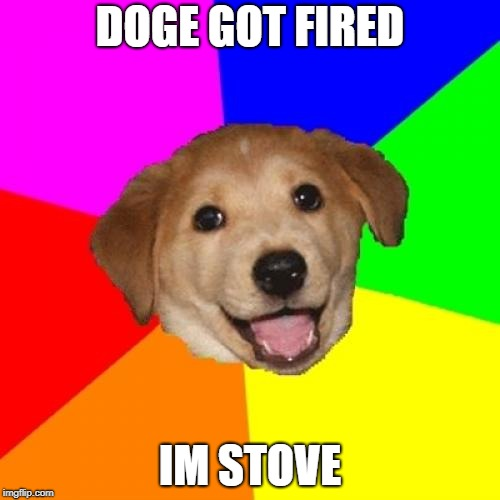 Advice Dog Meme | DOGE GOT FIRED IM STOVE | image tagged in memes,advice dog | made w/ Imgflip meme maker