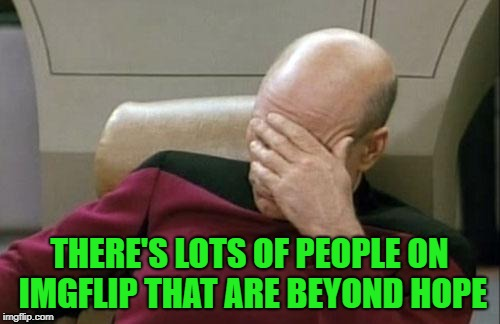 Captain Picard Facepalm Meme | THERE'S LOTS OF PEOPLE ON IMGFLIP THAT ARE BEYOND HOPE | image tagged in memes,captain picard facepalm | made w/ Imgflip meme maker