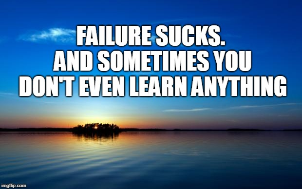 Inspirational Quote | FAILURE SUCKS. AND SOMETIMES YOU DON'T EVEN LEARN ANYTHING | image tagged in inspirational quote | made w/ Imgflip meme maker