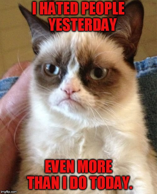 Grumpy Cat | I HATED PEOPLE   YESTERDAY EVEN MORE THAN I DO TODAY. | image tagged in memes,grumpy cat,hate,more,yesterday,grumpy cat weekend | made w/ Imgflip meme maker