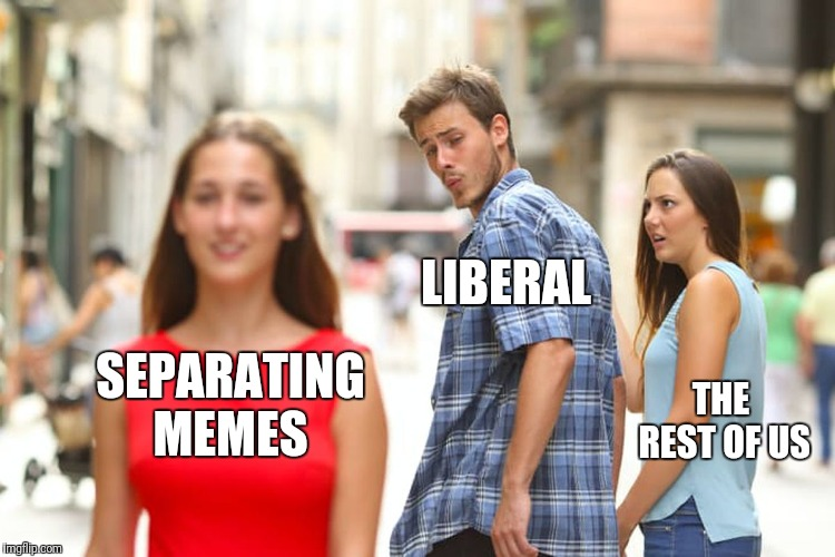 Distracted Boyfriend Meme | SEPARATING MEMES LIBERAL THE REST OF US | image tagged in memes,distracted boyfriend | made w/ Imgflip meme maker