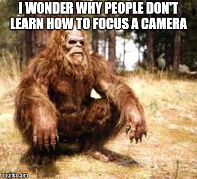 bigfoot | I WONDER WHY PEOPLE DON'T LEARN HOW TO FOCUS A CAMERA | image tagged in bigfoot | made w/ Imgflip meme maker