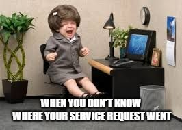 crying baby  | WHEN YOU DON'T KNOW WHERE YOUR SERVICE REQUEST WENT | image tagged in crying baby | made w/ Imgflip meme maker