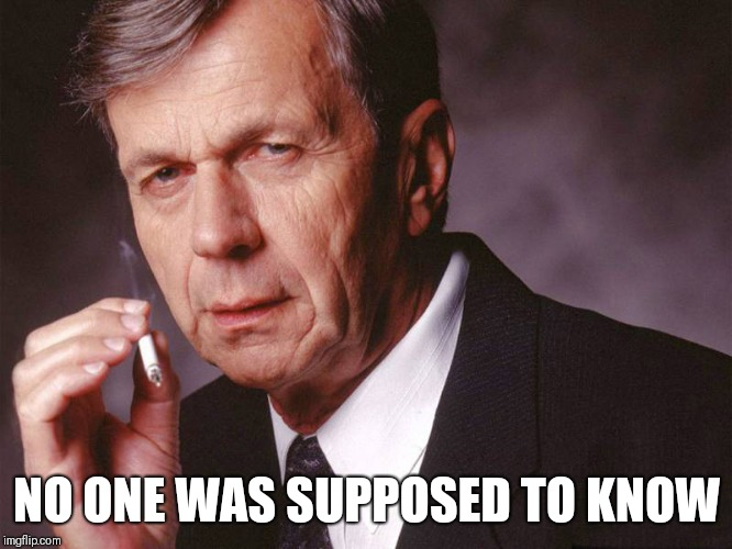 Cigarette Smoking Man | NO ONE WAS SUPPOSED TO KNOW | image tagged in cigarette smoking man | made w/ Imgflip meme maker