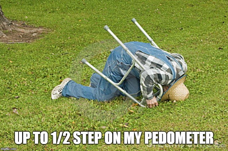 UP TO 1/2 STEP ON MY PEDOMETER | made w/ Imgflip meme maker