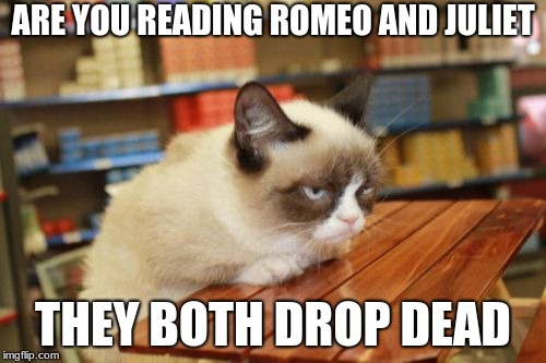 Grumpy Cat Table |  ARE YOU READING ROMEO AND JULIET; THEY BOTH DROP DEAD | image tagged in memes,grumpy cat table,grumpy cat | made w/ Imgflip meme maker