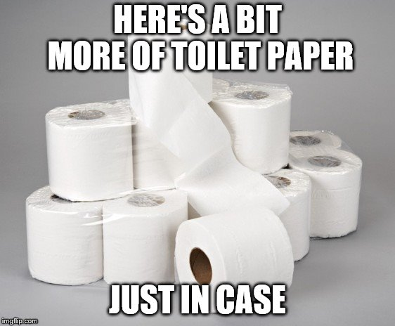toilet paper | HERE'S A BIT MORE OF TOILET PAPER JUST IN CASE | image tagged in toilet paper | made w/ Imgflip meme maker