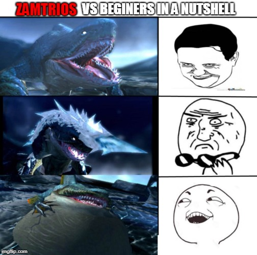 Zamtrios vs beginers |  VS BEGINERS IN A NUTSHELL; ZAMTRIOS | image tagged in memes,funny,monster hunter,meme faces | made w/ Imgflip meme maker