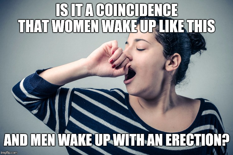 Yawn | IS IT A COINCIDENCE THAT WOMEN WAKE UP LIKE THIS AND MEN WAKE UP WITH AN ERECTION? | image tagged in yawn | made w/ Imgflip meme maker