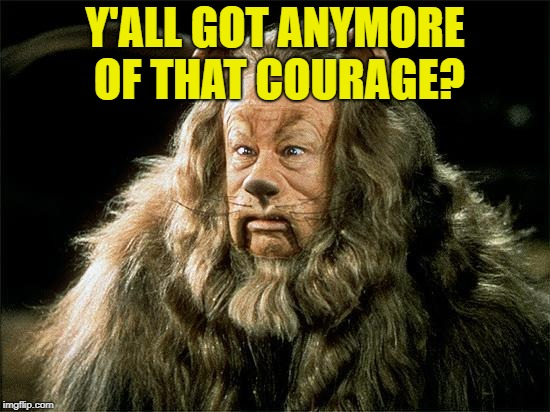 cowardly lion | Y'ALL GOT ANYMORE OF THAT COURAGE? | image tagged in cowardly lion | made w/ Imgflip meme maker