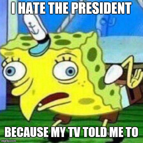 I HATE THE PRESIDENT BECAUSE MY TV TOLD ME TO | image tagged in dumb spongebob,president,trump | made w/ Imgflip meme maker
