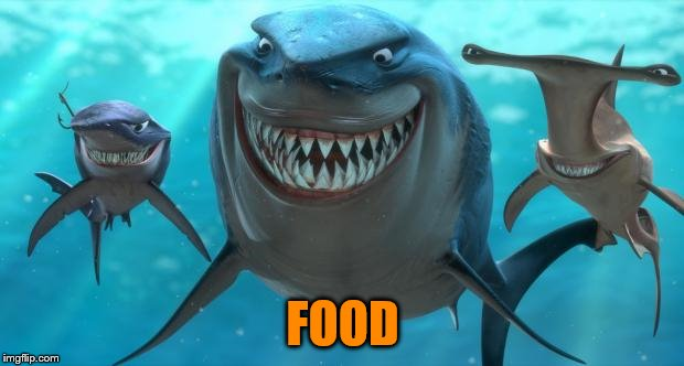 Fish are friends not food | FOOD | image tagged in fish are friends not food | made w/ Imgflip meme maker