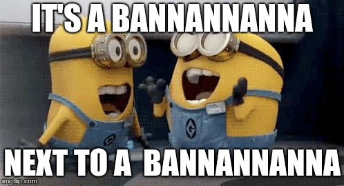 Excited Minions Meme | IT'S A BANNANNANNA NEXT TO A  BANNANNANNA | image tagged in memes,excited minions | made w/ Imgflip meme maker