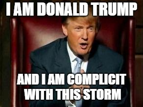 Donald Trump | I AM DONALD TRUMP AND I AM COMPLICIT WITH THIS STORM | image tagged in donald trump | made w/ Imgflip meme maker