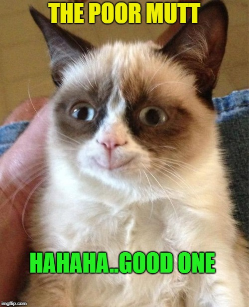 Grumpy Cat Happy Meme | THE POOR MUTT HAHAHA..GOOD ONE | image tagged in memes,grumpy cat happy,grumpy cat | made w/ Imgflip meme maker