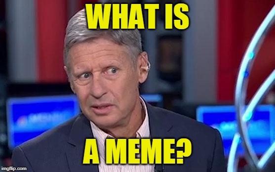 Safe for Work |  WHAT IS; A MEME? | image tagged in meme,gary johnson | made w/ Imgflip meme maker