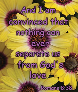 Romans 8:38 I Am Convinced Nothing Can Separate Us From God's Love | And I am Romans 8:38 convinced that nothing can ever separate us love from God's | image tagged in bible,holy bible,holy spirit,bible verse,verse,god | made w/ Imgflip meme maker