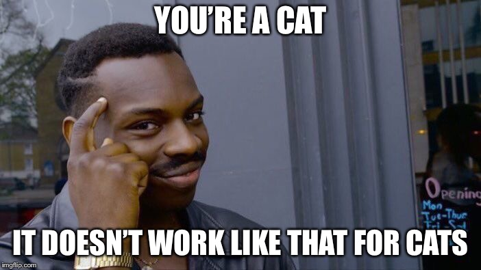 Roll Safe Think About It Meme | YOU'RE A CAT IT DOESN'T WORK LIKE THAT FOR CATS | image tagged in memes,roll safe think about it | made w/ Imgflip meme maker