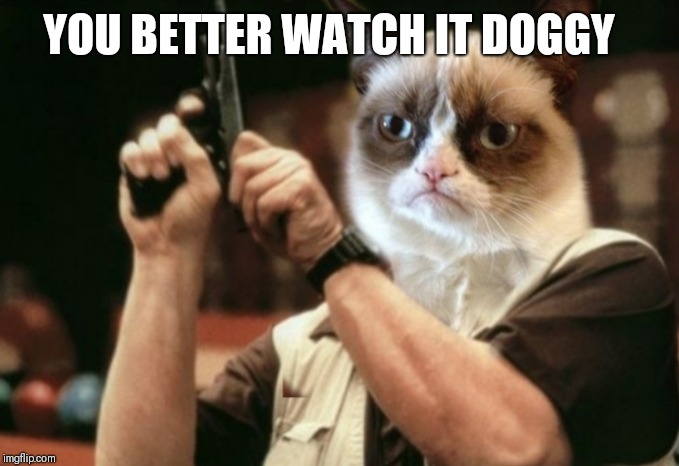 Grumpy cat | YOU BETTER WATCH IT DOGGY | image tagged in grumpy cat | made w/ Imgflip meme maker