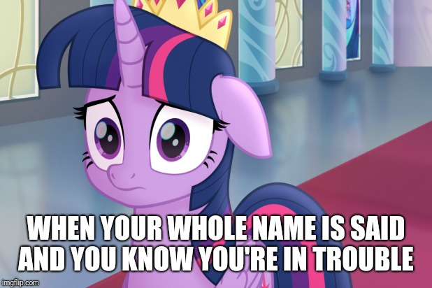 WHEN YOUR WHOLE NAME IS SAID AND YOU KNOW YOU'RE IN TROUBLE | image tagged in mlp twilight | made w/ Imgflip meme maker