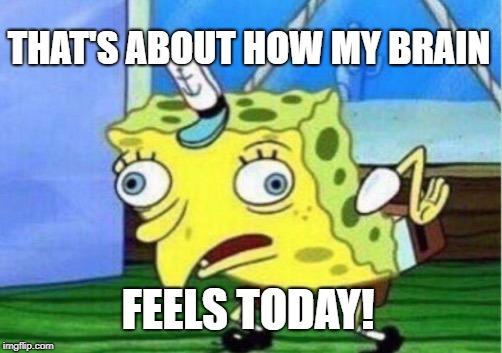 Mocking Spongebob Meme | THAT'S ABOUT HOW MY BRAIN FEELS TODAY! | image tagged in memes,mocking spongebob | made w/ Imgflip meme maker