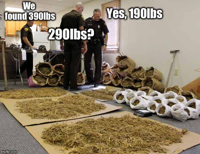 We found 390lbs 290lbs? Yes, 190lbs | image tagged in ginseng | made w/ Imgflip meme maker