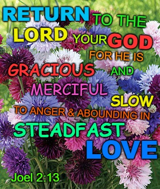 Joel 2:13 Return To The Lord Your God For He Is Merciful Slow To Anger And Abounding In Steadfast Love | RETURN Joel 2:13 TO THE LORD FOR HE IS GRACIOUS AND MERCIFUL TO ANGER & ABOUNDING IN SLOW LOVE STEADFAST YOUR GOD | image tagged in bible,holy bible,holy spirit,bible verse,verse,god | made w/ Imgflip meme maker