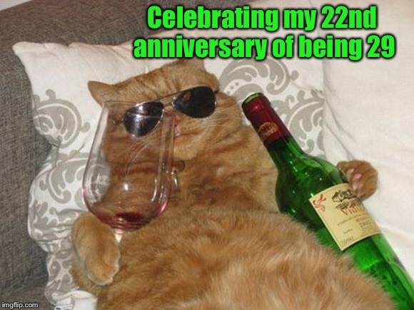 Happy birthday to Me  | Celebrating my 22nd anniversary of being 29 | image tagged in funny cat birthday,happy birthday,anniversary,celebration | made w/ Imgflip meme maker