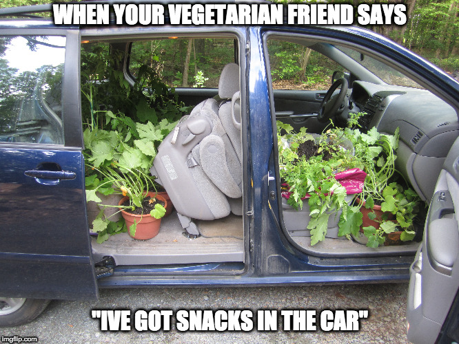 "snacks in the car | WHEN YOUR VEGETARIAN FRIEND SAYS ""IVE GOT SNACKS IN THE CAR"" 