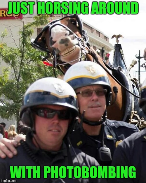 Photobomb horse | JUST HORSING AROUND WITH PHOTOBOMBING | image tagged in photobomb,police,horse,pipe_picasso | made w/ Imgflip meme maker