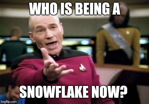 Picard Wtf Meme | WHO IS BEING A SNOWFLAKE NOW? | image tagged in memes,picard wtf | made w/ Imgflip meme maker