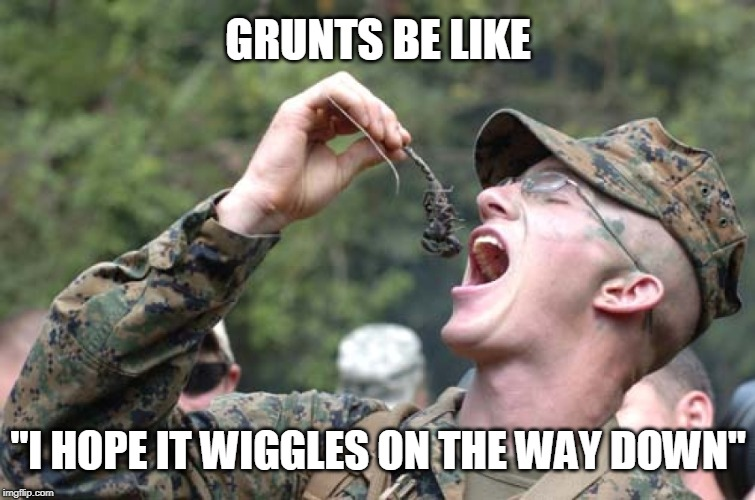 "Ooh-Rah! | GRUNTS BE LIKE ""I HOPE IT WIGGLES ON THE WAY DOWN"" 