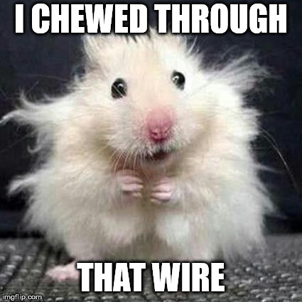 What a mouse looks like after chewing through your wire. | I CHEWED THROUGH THAT WIRE | image tagged in stressed mouse,memes,mouse,electricity,shocked,funny | made w/ Imgflip meme maker