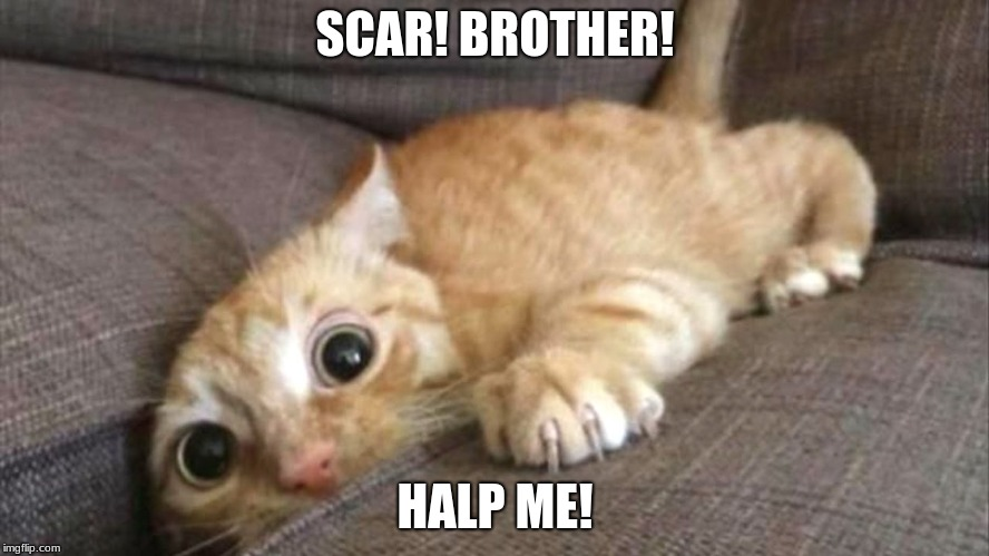 SCAR! BROTHER! HALP ME! | image tagged in lion king,disney | made w/ Imgflip meme maker