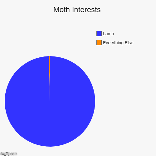 Moth Interests | Everything Else, Lamp | image tagged in funny,pie charts | made w/ Imgflip pie chart maker