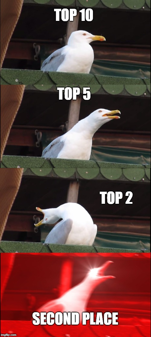 Inhaling Seagull Meme | TOP 10 TOP 5 TOP 2 SECOND PLACE | image tagged in memes,inhaling seagull | made w/ Imgflip meme maker